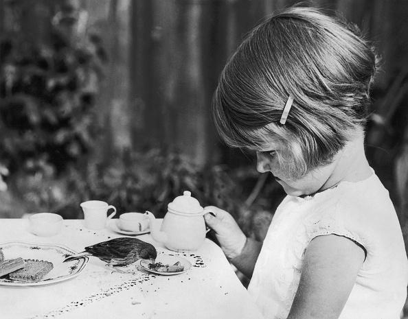 Sweet Food「Tiny Tea」:写真・画像(17)[壁紙.com]