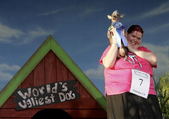 Ugliness「California Fair Crowns World's Ugliest Dog」:写真・画像(3)[壁紙.com]