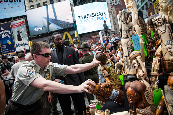 Environmental Conservation「One Ton Of Confiscated Ivory Destroyed In New York's Times Square」:写真・画像(5)[壁紙.com]