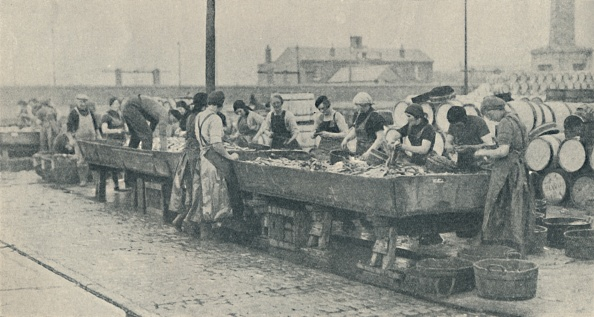 Recreational Pursuit「An Important Part Of The Industry Scottish Girls Busy Gutting At Yarmouth」:写真・画像(19)[壁紙.com]