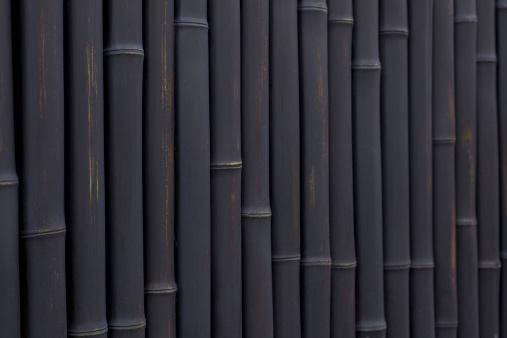 Japan「Black bamboos」:スマホ壁紙(6)