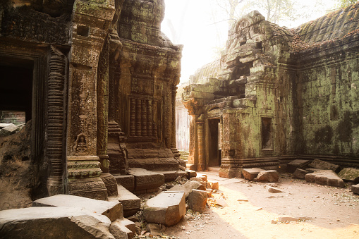Ta Prohm Temple「Cambodia, Angkor, Ta Prohm temple, Tomb Raider film location」:スマホ壁紙(19)