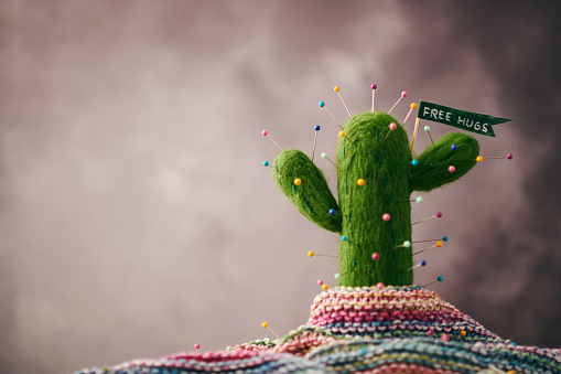 Knitted「Cactus plant with pins and message」:スマホ壁紙(19)