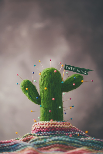 Knitted「Cactus plant with pins and message」:スマホ壁紙(7)
