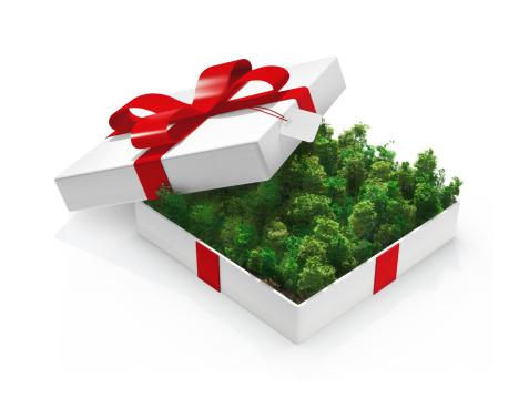 Deforestation「Green Gift」:スマホ壁紙(10)