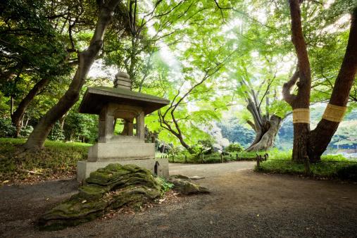 遅い「禅ガーデン東京」:スマホ壁紙(18)
