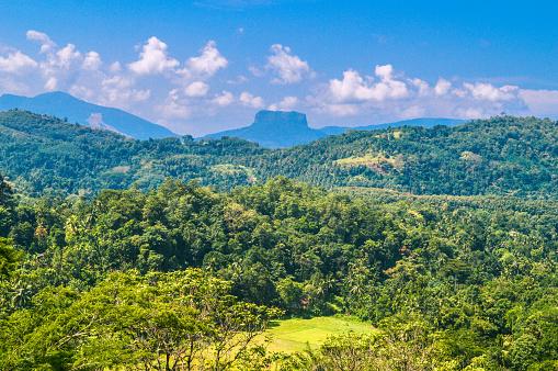 Sri Lanka「Bible Rock Sri Lanka」:スマホ壁紙(14)