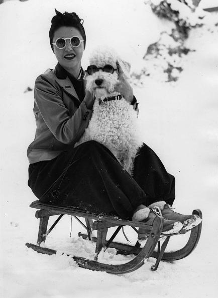"Actress「The American actress Melitta Mara with her dog ""Frisco,"" Photograph, Suisse, St, Moritz, 1939」:写真・画像(18)[壁紙.com]"