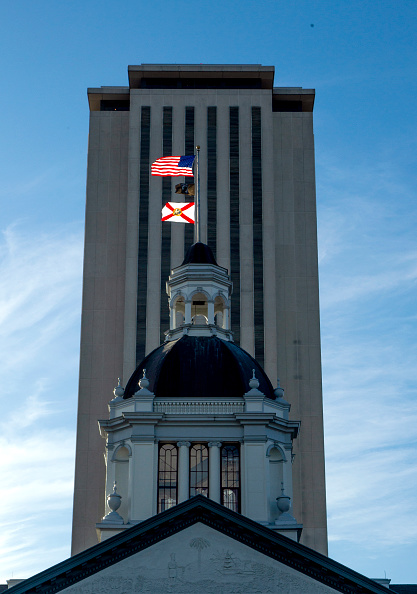Florida State Capitol「Contentious Florida Senate And Gubernatorial Midterm Election Results Remain To Be Definitively Settled As Recount Looms」:写真・画像(6)[壁紙.com]