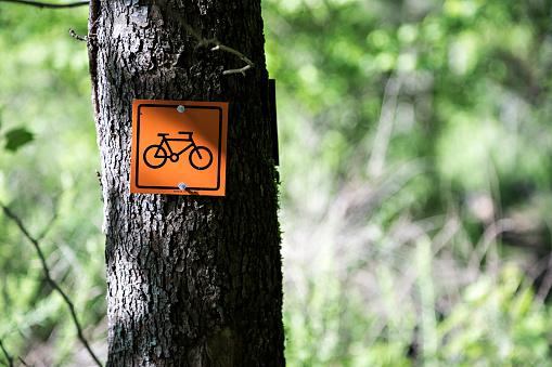 サイクリング「Mountain biking sign on wooded trail」:スマホ壁紙(6)