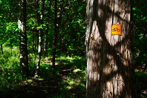 サイクリング「Mountain biking sign on wooded trail」:スマホ壁紙(3)
