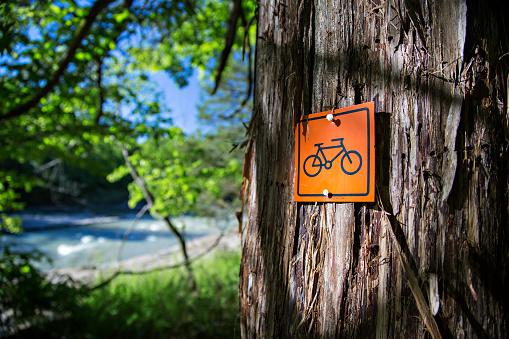 サイクリング「Mountain biking sign on wooded trail」:スマホ壁紙(5)