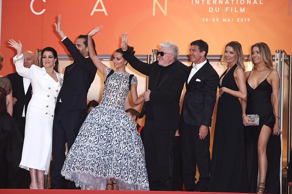 "Cannes International Film Festival「""Pain And Glory (Dolor Y Gloria/ Douleur et Gloire)"" Red Carpet - The 72nd Annual Cannes Film Festival」:写真・画像(7)[壁紙.com]"