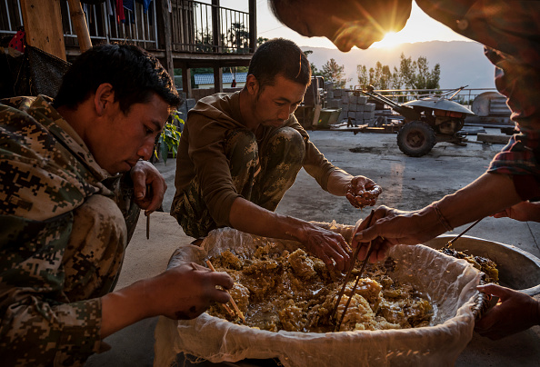 Land「Yunnan Honey Hunters Scale Cliffs For Liquid Gold」:写真・画像(12)[壁紙.com]