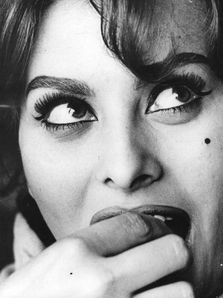 眼「Sophia Loren」:写真・画像(13)[壁紙.com]