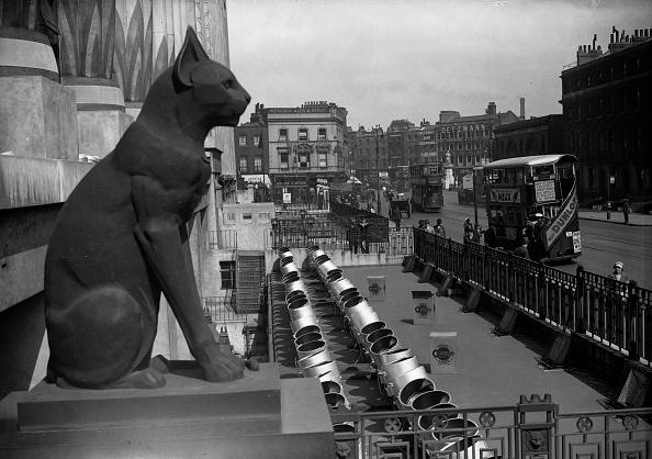 Lighting Equipment「Black Cat Statue」:写真・画像(7)[壁紙.com]