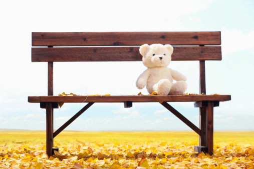 Eco Tourism「Toy bear on bench」:スマホ壁紙(2)