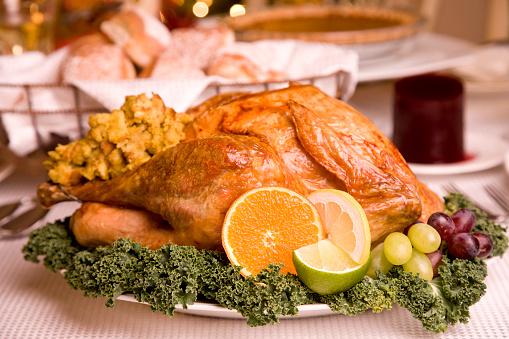 Stuffed Turkey「Turkey Day (XXL)」:スマホ壁紙(13)