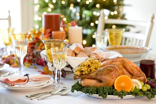 Stuffed Turkey「Turkey Day (XXL)」:スマホ壁紙(18)