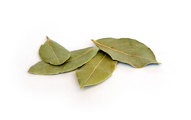 Dry bay leaves on white:スマホ壁紙(壁紙.com)