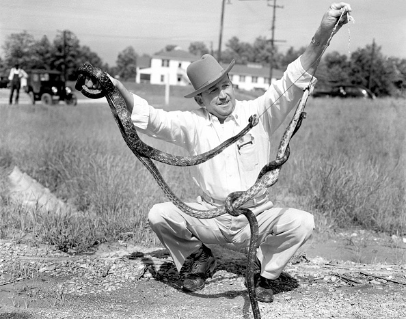 Galerie Bilderwelt「Snake Man」:写真・画像(4)[壁紙.com]