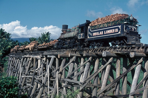 October「Insular Lumber Company's Baldwin Built 4 Cylinder Compound 0-6-6-0 Mallet No.7 draws logs bound for the coastal sawmill over the wooden trestle viaduct on the Philippine Island of Negros. The viaduct built in the best of Wide west traditions under Americ」:写真・画像(6)[壁紙.com]