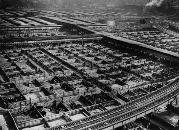 Image「Chicago Stock Yard」:写真・画像(18)[壁紙.com]