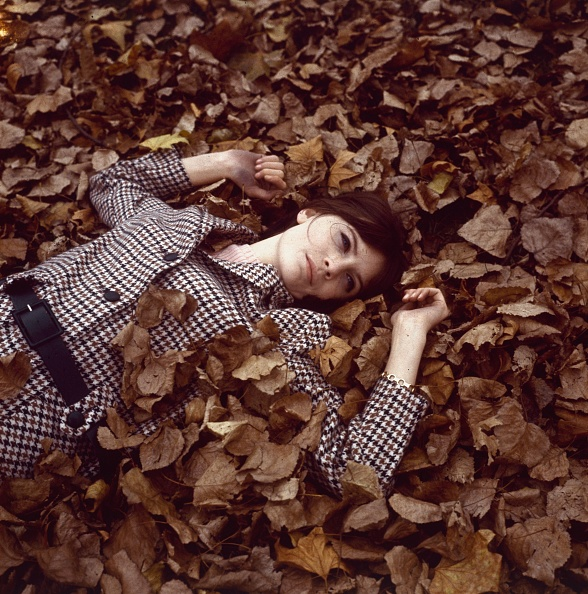 Autumn「Sandie Shaw」:写真・画像(7)[壁紙.com]