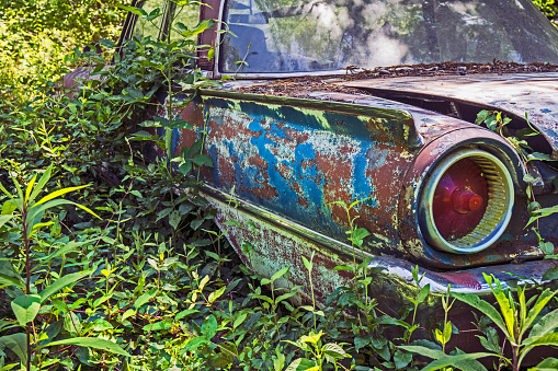 Retro「USA, Rural Georgia, Abandoned car overgrown with weeds」:スマホ壁紙(5)