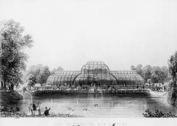 Kew Gardens「The Palm House」:写真・画像(2)[壁紙.com]