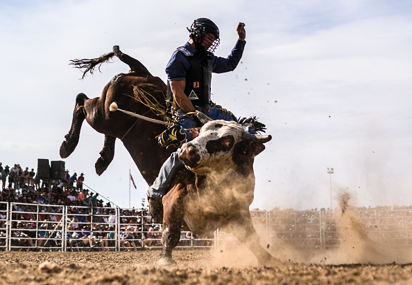 James Gourley「Ute Enthusiasts Gather For 21st Annual Deni Ute Muster」:写真・画像(8)[壁紙.com]
