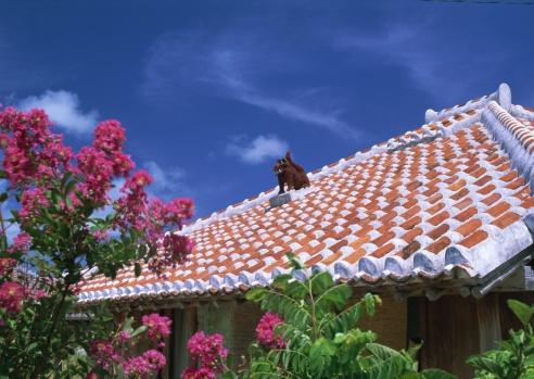 Rooftop「Rooftop」:スマホ壁紙(1)