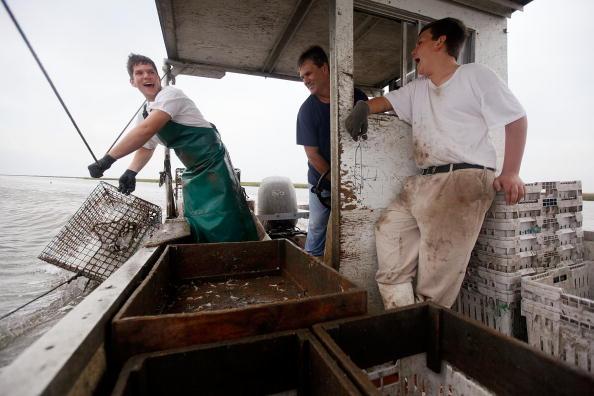 Crustacean「West Of Mississippi, Fishing Industry Fears Spread Of Oil Slick」:写真・画像(18)[壁紙.com]