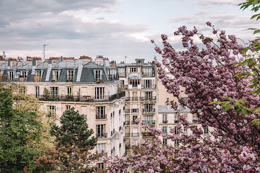 French Culture「Parisian apartment building in spring」:スマホ壁紙(19)