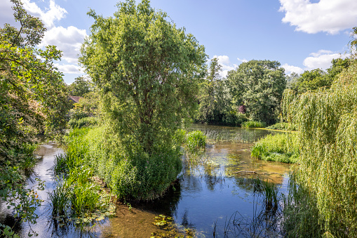 Water's Edge「Summertime in Constable Country - The River Stour at Boxted Mill, Essex UK between Stoke by Nayland and Dedham」:スマホ壁紙(4)