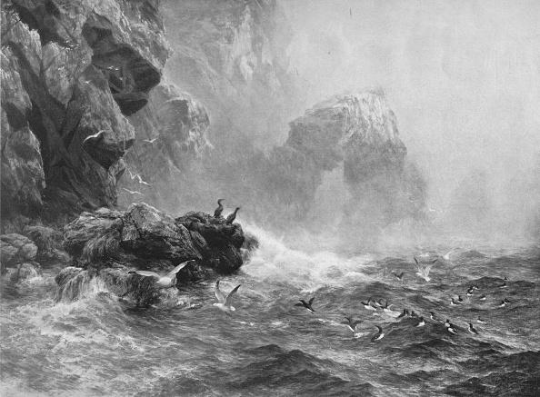 波「Where Nought Is Heard But Lashing Wave And Sea-Birds Cry」:写真・画像(17)[壁紙.com]