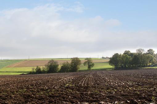 Plowed Field「fields of agriculture」:スマホ壁紙(5)