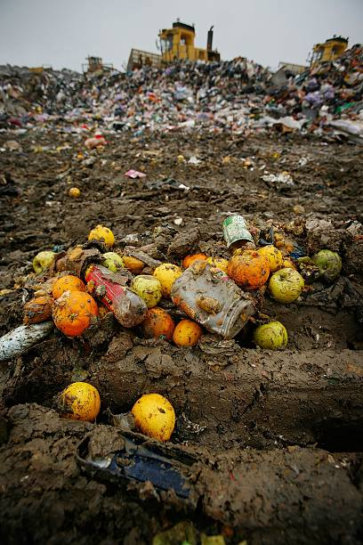 Landfill Sites In The South Are In Danger Of Running Out Of Space:ニュース(壁紙.com)