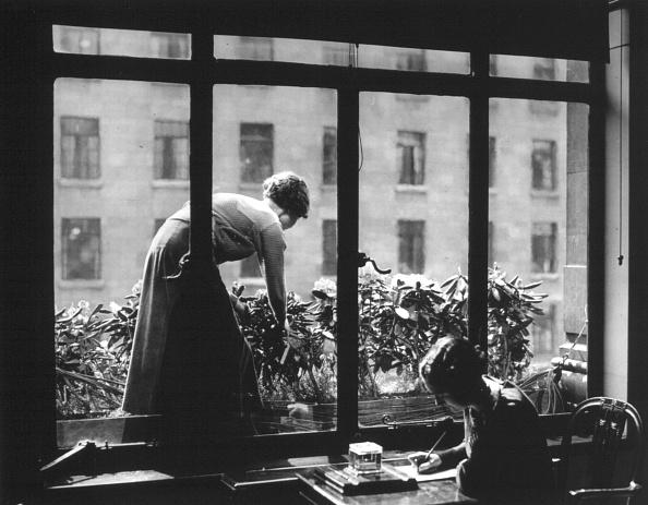 Writing「Office Window Box」:写真・画像(17)[壁紙.com]