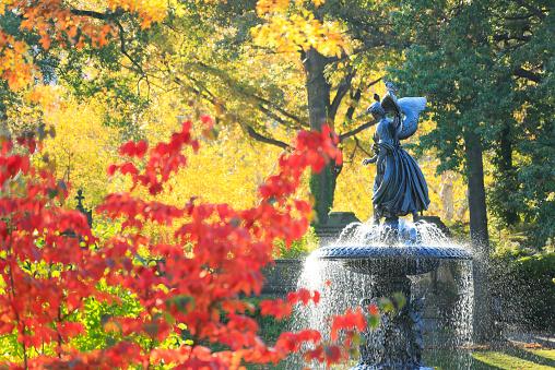 Central Park - Manhattan「The sun illuminates the autumn leaves and fountain」:スマホ壁紙(19)