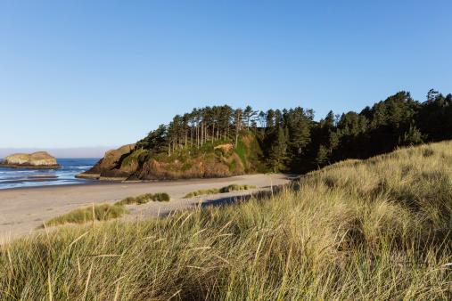 Cannon Beach「Oregon coast beach and rock」:スマホ壁紙(2)