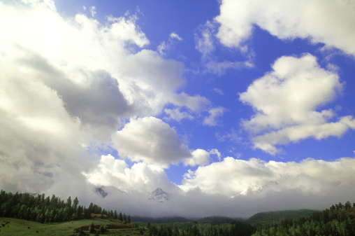 Uncompahgre National Forest「clouds & mist swirling around sneffels range, uncompahgre nf, co    」:スマホ壁紙(7)