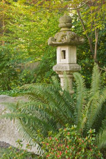 Frond「Stone Japanese lantern with sword ferns」:スマホ壁紙(13)