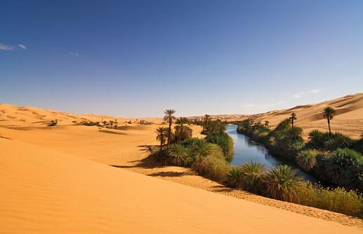 Awbari Sand Sea「Um el Ma Oasis , Mandara lake , Libyan Sahara Desert, Africa」:スマホ壁紙(0)