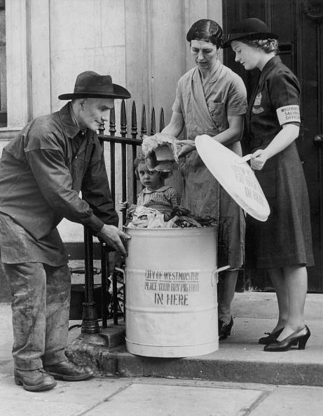 Feeding「Pig Food Collector」:写真・画像(11)[壁紙.com]