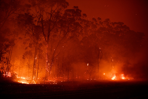 Forest Fire「NSW Firefighters On High Alert Ahead Of New Year's Eve Fireworks Display」:写真・画像(17)[壁紙.com]