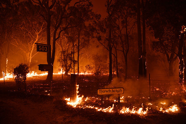 Forest Fire「NSW Firefighters On High Alert Ahead Of New Year's Eve Fireworks Display」:写真・画像(15)[壁紙.com]