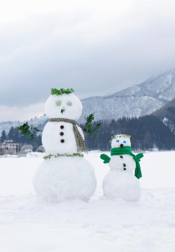 雪だるま「Two snowmen in snowy field 」:スマホ壁紙(15)