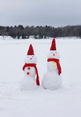 雪だるま「Two snowmen in snowy field」:スマホ壁紙(3)