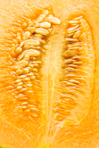 メロン「Sugar melon, close up」:スマホ壁紙(10)